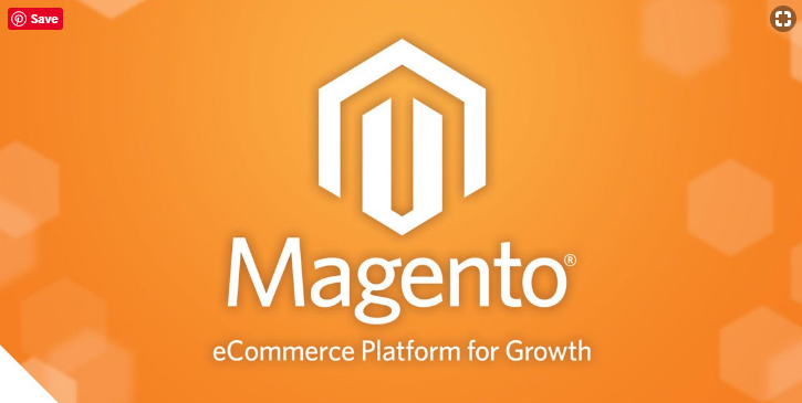 best magento developers