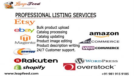Amazon Product Listing and Upload Management Services