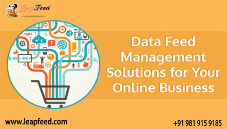 Data feed Management Services for Online Business