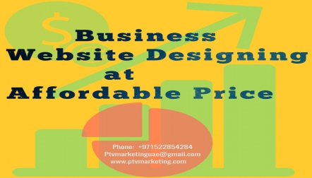 Website designing at Low Cost