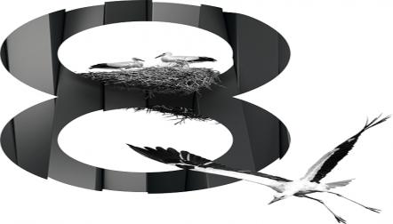 Element 8 web design and development company dubai